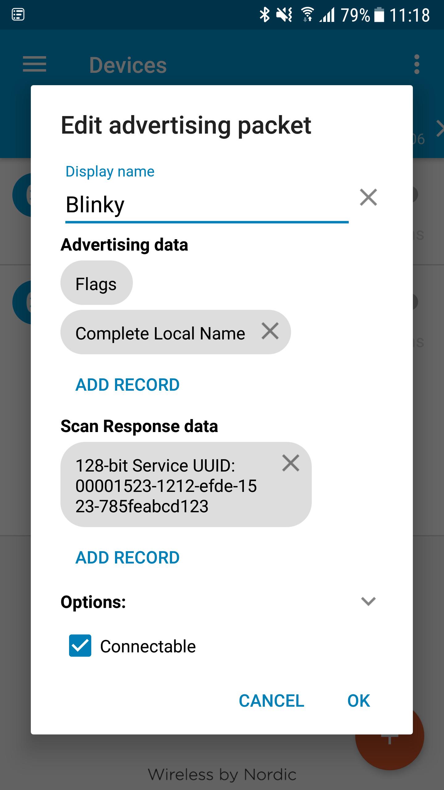 Nrf Blinky App