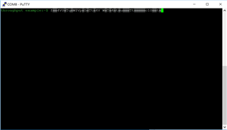 Receiving bad output in Putty console - Nordic DevZone